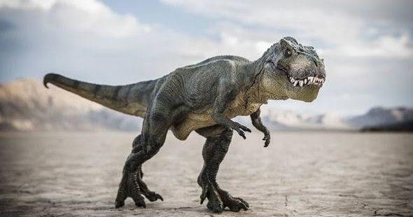 25 Nama Nama Dinosaurus Dan Gambarnya Jenis Jenis Dinosaurus