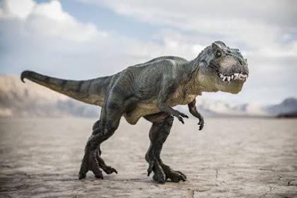 25+ Nama-Nama Dinosaurus dan Gambarnya (Jenis-Jenis Dinosaurus)