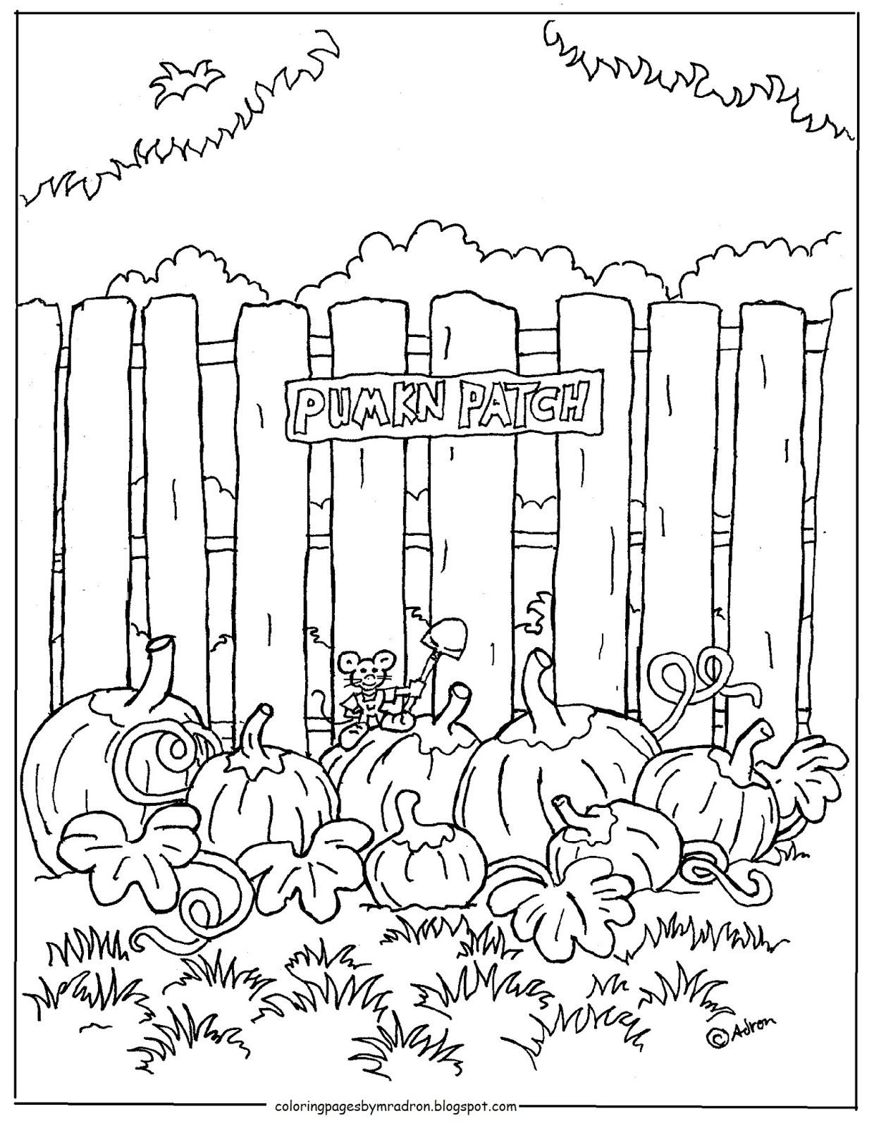 Coloring Pages For Kids By Mr Adron Pumpkin Patch