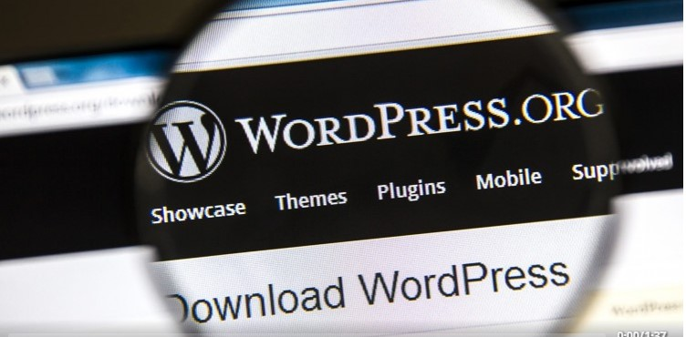 50% off Wordpress for Beginners: Domain, Hosting, Install in 30 Min!