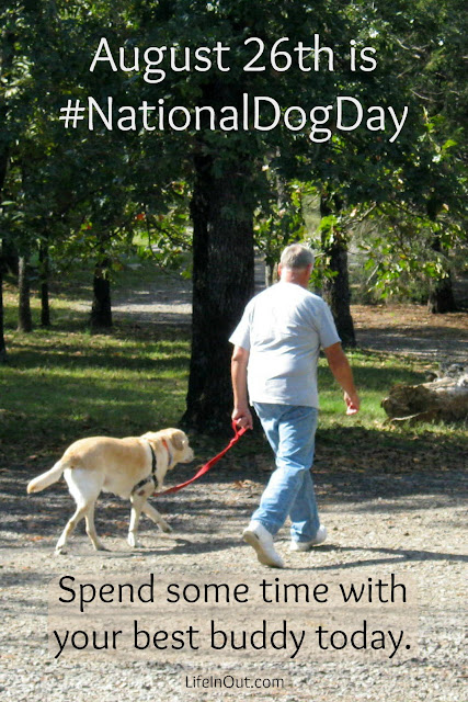 You can be sure these best friends will be celebrating National Dog Day today, August 26th, doing what they love best. Have you walked your dog today?