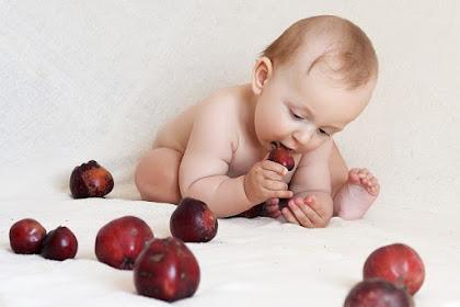 5 Asupan makanan sehat untuk bayi anda