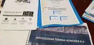Hasil Rapat Menpan RB Dengan Komisi II DPR Bahas Honorer K2