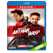 Ant-Man and The Wasp (2018) BDRip 1080p Audio Dual Latino-Ingles
