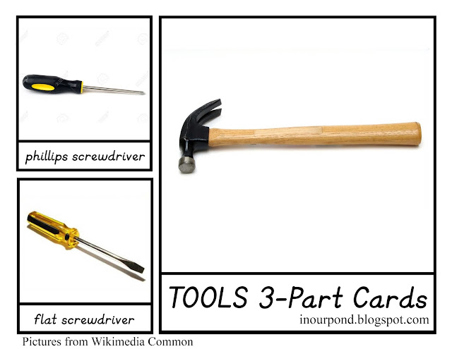 FREE 3-Part Cards for Safari Ltd Tools Toob from In Our Pond