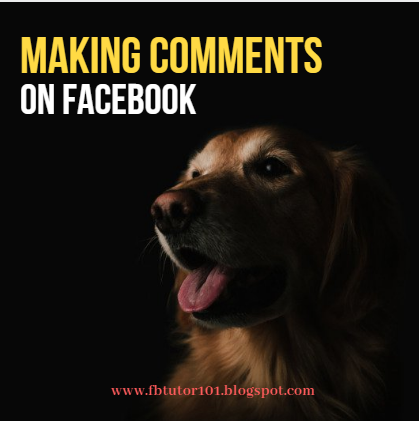 Making Comments On Facebook