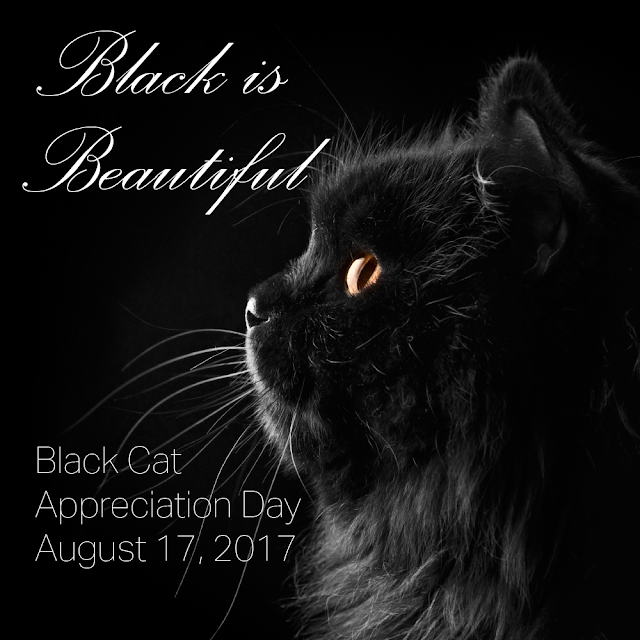 Black is beautiful--Black Cat Appreciation Day 2017