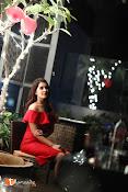 Raashi Khanna Birthday Celebrations-thumbnail-2