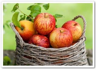 Сбор и хранение фруктов
