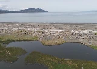 Elwha Estuary Place site, Clallam County.
