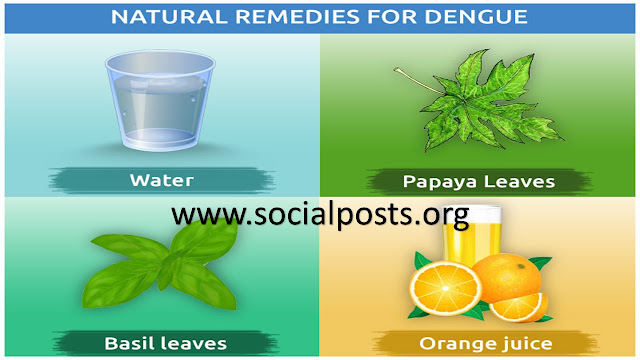 Dengue Treatment at Home