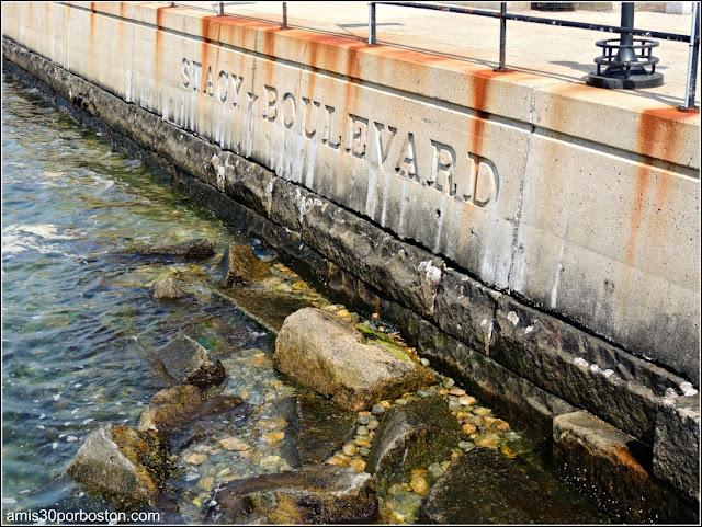 Paseo Marítimo de Gloucester: Stacy Boulevard