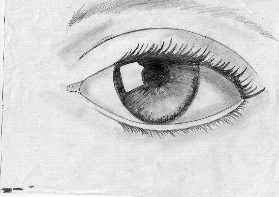 Sombras Y Dibujos