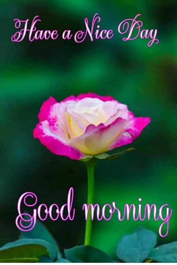 gud mrng pictures download