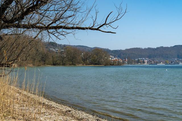 Wandern Konstanz Bodensee SeeGang Etappe 3 - Riedwiesen und Steiluferlandschaften am Überlinger See: Von Bodman durchs Aachried nach Ludwigshafen und auf dem Blütenweg nach Sipplingen 4