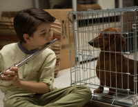 Wiener Dog le film