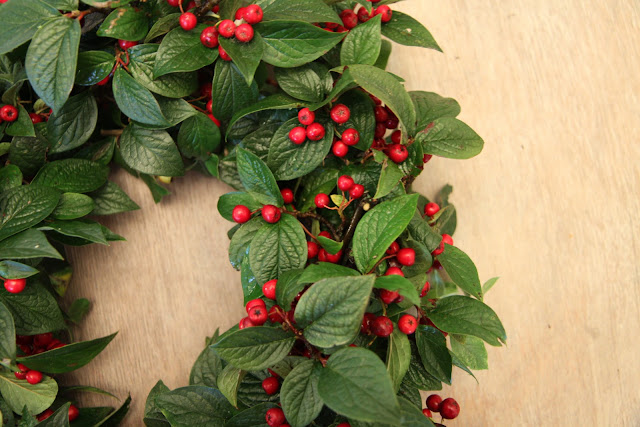 Christmas Craft Ideas On Modern Country Style: Make Your Own Wreath