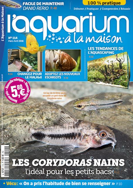 http://www.aquariumalamaison.com/magazine/magazines-papier-a-l-unite/3407-l-aquarium-a-la-maison-n-114.html#menu_centre