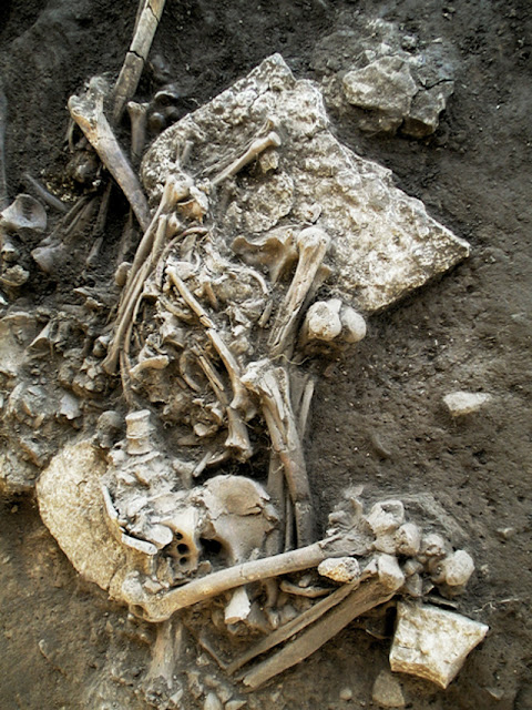 An ancient strain of plague may have led to the decline of Neolithic Europeans