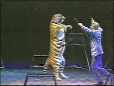 Historic Bill to End Cruelty to Wild Animals in Circuses