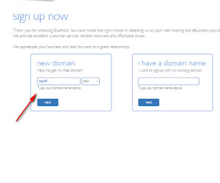 Domain Name Window