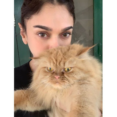 Aditi Rao with her pet