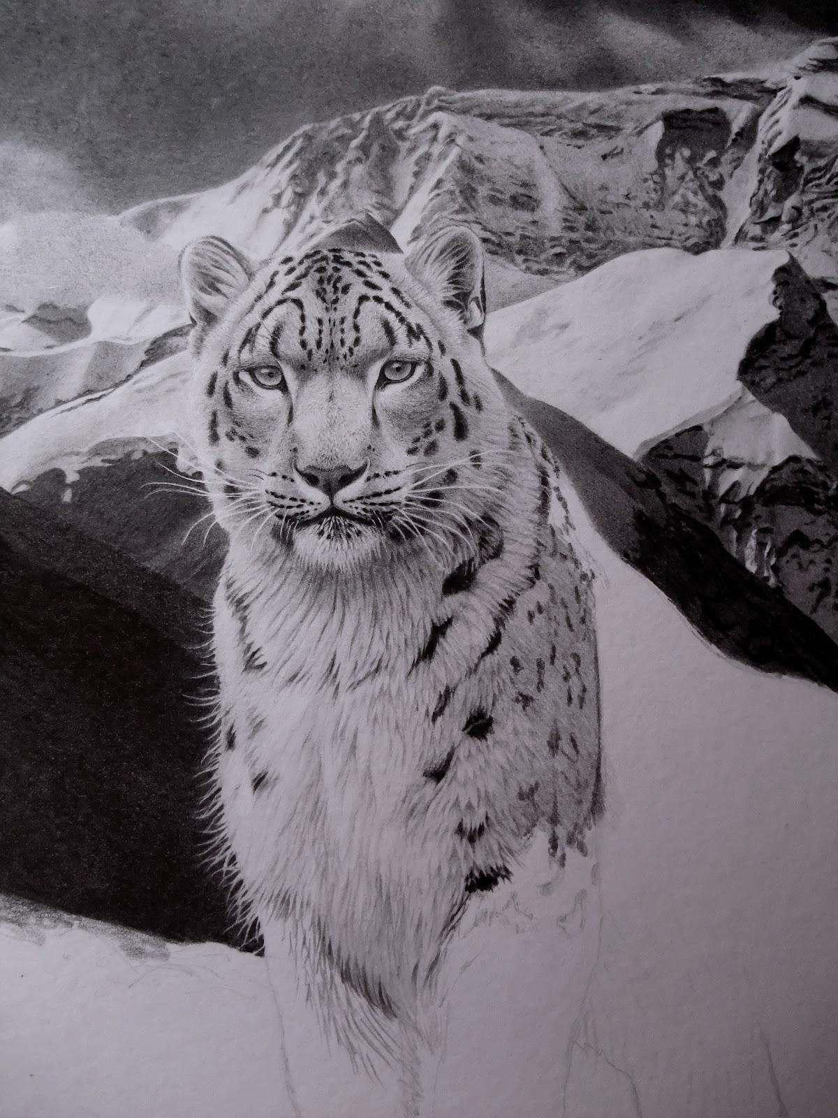 Antoine Roquain Dessin Animalier, Wildlife Pencil Art