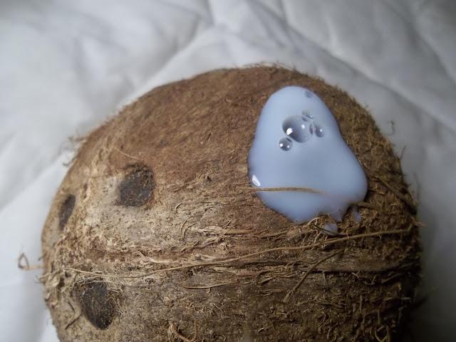 Douche Soin Yoghurt Coconut - Fa