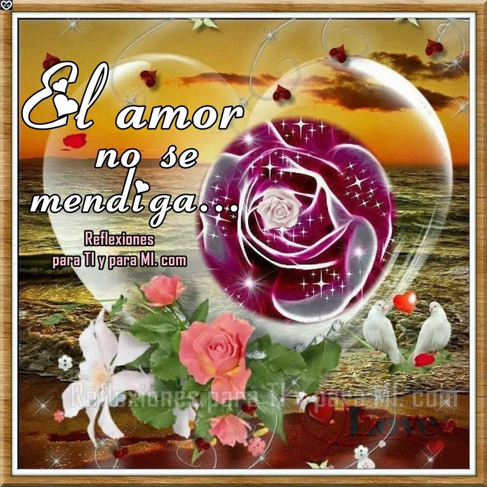 El amor no se mendiga, se da cuando lo sientes.  El amor no se busca, llega sin esperarlo.  El amor no son momentos, es toda una vida.  El amor no se fuerza, es espontáneo.