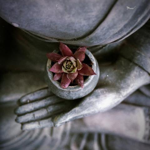 मेडिटेशन कैसे करें - Meditation Kaise Kare