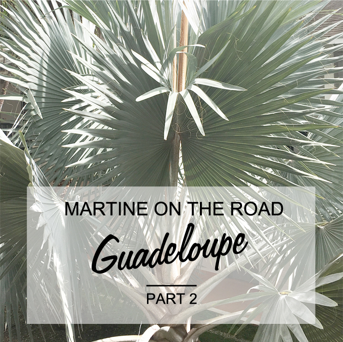 Blog voyage lovers of mint - guadeloupe