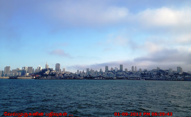 View of SFO Downtown from Alcatraz