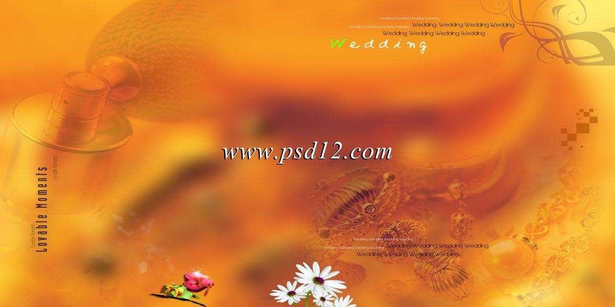 Pictures of Indian Wedding Album Templates- Karizma Album Designs