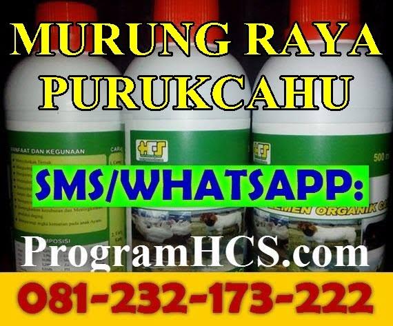 Jual SOC HCS Murung Raya Purukcahu
