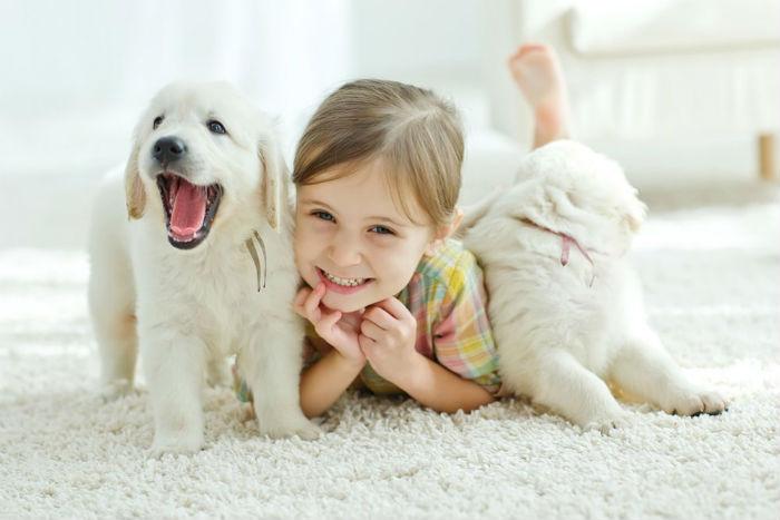 Τι πρέπει να πεις σε ένα παιδί που ζητάει ένα σκυλάκι