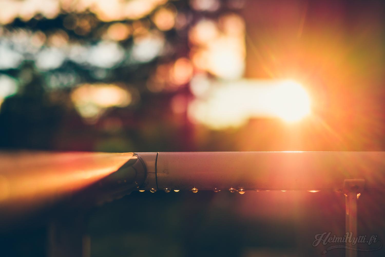 elokuu-auringonlasku-kaleva