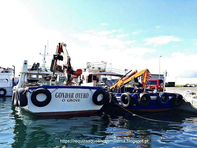 Barcos de Pesca no Porto O Grove