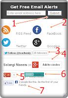 Blogger Social Media Widget