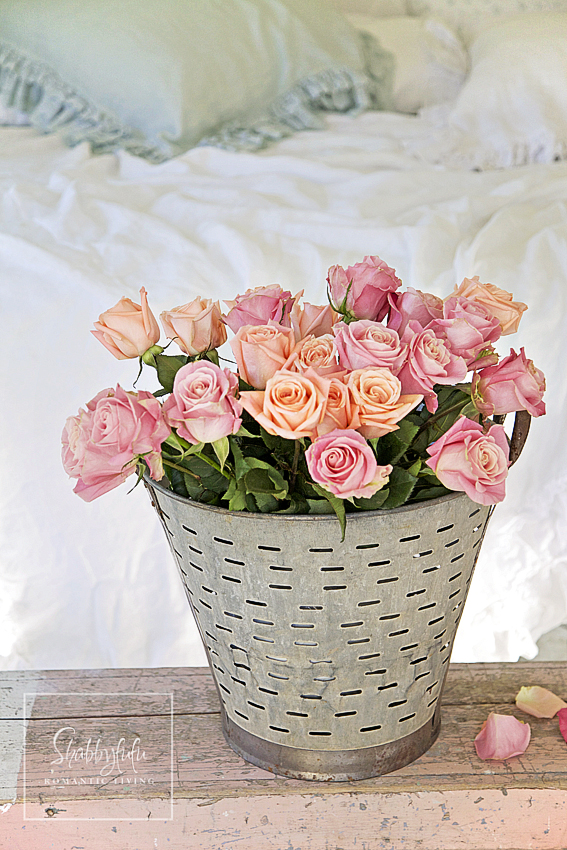 romantic room designs - blush pink and light peach roses in a tin garden bucket
