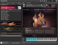 Native Instruments - Session Strings Pro 2 Screenshot 4