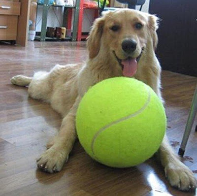 Oversized Tennis Ball