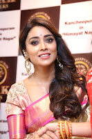 Actress Shriya Saran Stills in Saree at VRK Silks Launches at Himayat Nagar  0013.JPG