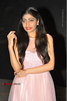 Actress Nidhisha Reddy Pos in Beautiful Pink Dress at Virus Telugu Movie Audio Launch .COM 0007.JPG