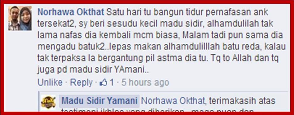 testimonial madu yamani sidr