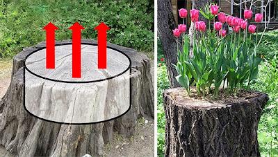 Jardineras en troncos de árboles