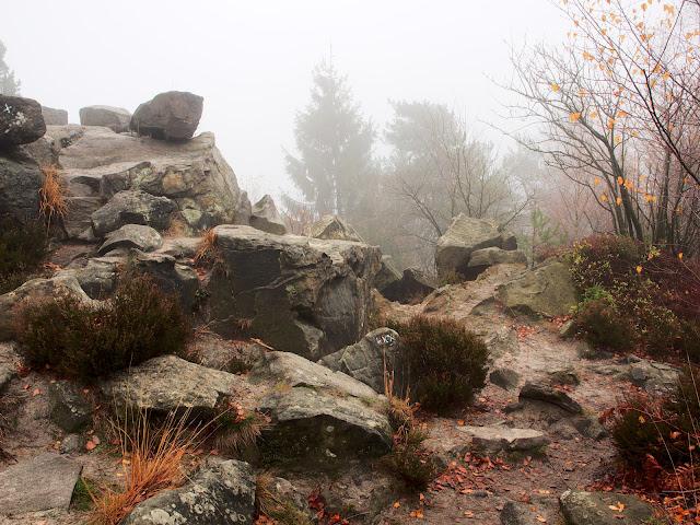 Heidekraut und Felsen am Velmerstot