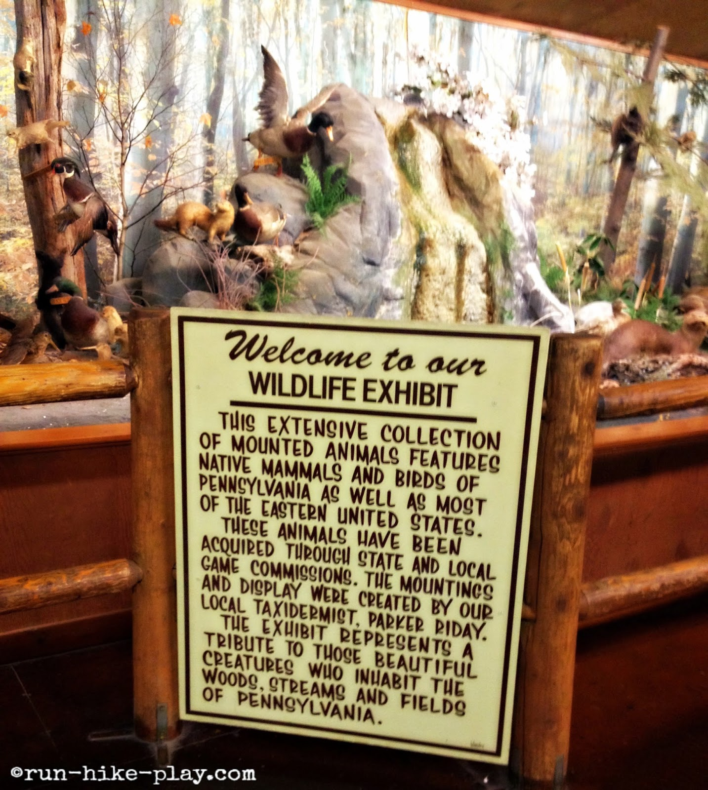 Bushkill Falls Wildlife Exhibit