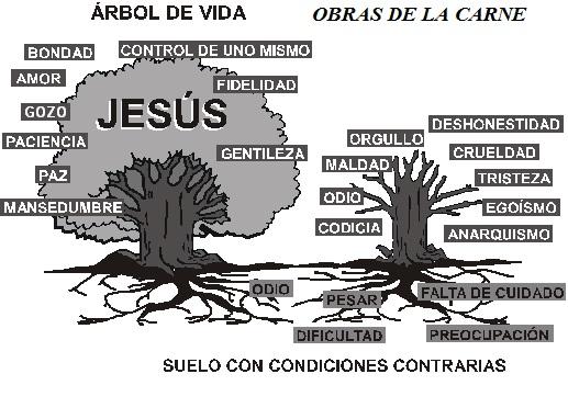 condicion-espiritual
