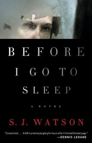 Before I Go to Sleep book