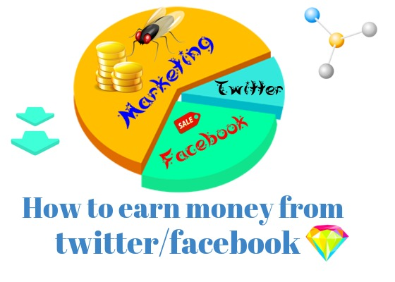 How to earn money from twitter/facebook without investment